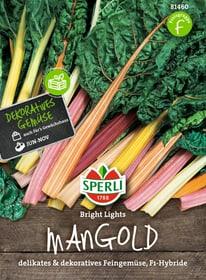 Mangold Bright Lights Gemüsesamen Sperli 650154700000 Bild Nr. 1