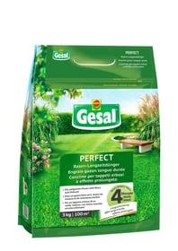 Rasen-Langzeitdünger PERFECT, 3 kg Rasendünger Compo Gesal 658247300000 Bild Nr. 1