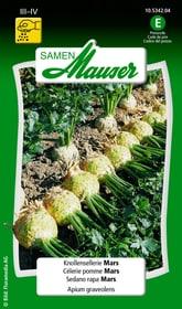 Sedano rapa Mars Sementi di verdura Samen Mauser 650115401000 Contenuto 0.5 g (ca. 100 piante o 10 m²) N. figura 1