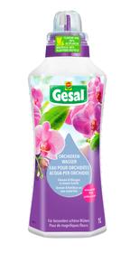 Acqua per orchidee, 1 l Fertilizzante liquido Compo Gesal 658247500000 N. figura 1
