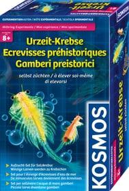Urzeit-Krebse selbst züchten Experimentieren KOSMOS 748618700000 Bild Nr. 1