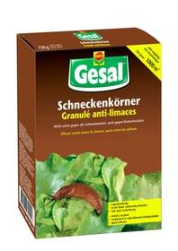 Schneckenkörner, 750 g Schneckenbekämpfung Compo Gesal 658511600000 Bild Nr. 1