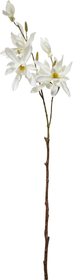 MAGNOLIA Kunstpflanze 440728800000 Bild Nr. 1