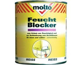 Feucht-Blocker Dose Molto 676059900000 Bild Nr. 1