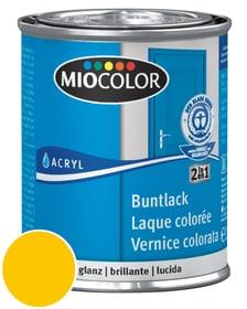Acryl Vernice colorata lucida Giallo melone 750 ml Miocolor 660548700000 Colore Giallo melone Contenuto 750.0 ml N. figura 1