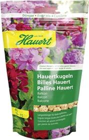 Kugeln für Balkonpflanzen, 40 Stück Düngestäbchen Hauert 658226500000 Bild Nr. 1