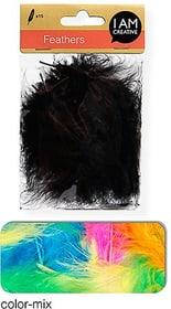 Flauschfedern I AM CREATIVE 665525300080 Farbe Multicolor Bild Nr. 1