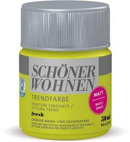 Vernice di tendenza opaca tester Fresh 50 ml Schöner Wohnen 660909700000 Colore Fresh Contenuto 50.0 ml N. figura 1