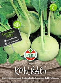 Kohlrabi Lanro Sementi di verdura Sperli 650181000000 N. figura 1