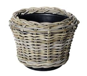 Cestino coprivaso Dry Pot Dry Pot 659649800000 Colore Grigio Taglio ø: 32.0 cm x A: 23.0 cm N. figura 1