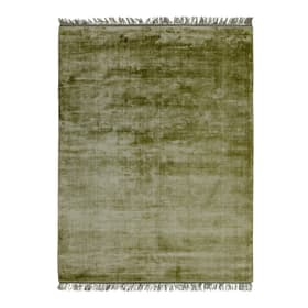 ALMERIA Tapis 371034300000 Dimensions L: 170.0 cm x P: 240.0 cm Couleur Olive Photo no. 1