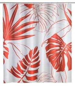 Tenda doccia Brasil rosso corallo WENKO 674011300000 N. figura 1