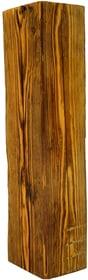 Altholz Balken 100-140 x 100-140 x 1000 mm 641504700000 Bild Nr. 1