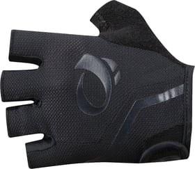 SELECT Glove