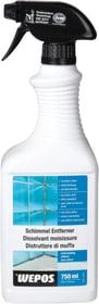 Schimmel Entferner chlorhaltig