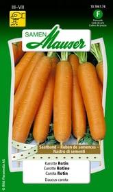 Saatband Karotte Rotin Gemüsesamen Samen Mauser 650110910000 Inhalt 3 x 2.5 m Saatband für 1 - 1.5 m² Bild Nr. 1