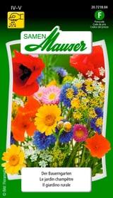 LE JARDIN CHAMPÊTRE Semences de fleurs Samen Mauser 650172700000 Photo no. 1