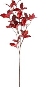 FLEUR Branche foliaire 440755800000 Photo no. 1