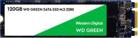 Green PC SSD intern 120GB, 120 GB , m.2 2280 SSD Intern Western Digital 785300155231 Bild Nr. 1