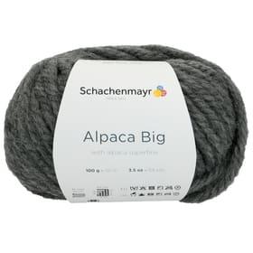 Laine Alpaca Big 667091800050 Taille L: 15.0 cm x L: 8.0 cm x H: 10.0 cm Couleur Gris Photo no. 1