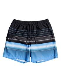"Swell Vision 17"" - Strand-Shorts für Männer"