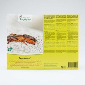 Carponem nématodes contre les courtilières, 6–12m² Organismes utiles Andermatt Biogarten 658517800000 Photo no. 1