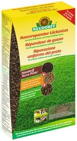 Rasenreparatur Lückenlos, 1.2 kg Rasensamen Neudorff 658245400000 Bild Nr. 1
