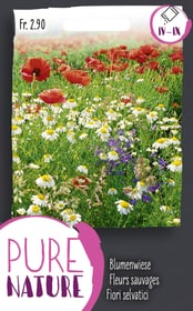 Fiori selvatici, in miscuglio 2.5g Sementi di fiori Do it + Garden 287300400000 N. figura 1