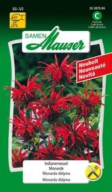 Indianernessel Blumensamen Samen Mauser 650138300000 Bild Nr. 1