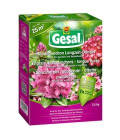 Rhododendron Langzeit-Dünger, 2,5 kg Compo Gesal 658232400000 Bild Nr. 1
