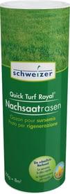 Quick - Turf Royal gazon pour sursemis, 0,2 kg