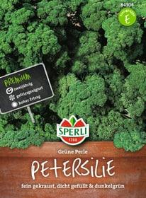 Petersilie Grüne Perle Gemüsesamen Sperli 650181400000 Bild Nr. 1
