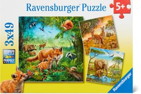 Les animaux monde Puzzle Puzzles Ravensburger 748977200000 Photo no. 1
