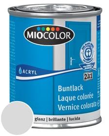 Acryl Vernice colorata lucida Rosso fuoco 750 ml Miocolor 660548200000 Colore Grigio chiaro Contenuto 125.0 ml N. figura 1