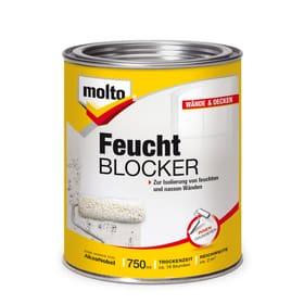 Bloqueur d'Humidité 750 ml Molto 676059900000 Photo no. 1