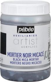 Pébéo Acrylic schwarzer Glimmermörtel Pebeo 663509220000 Bild Nr. 1
