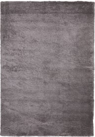 ALITA Tapis 412022408081 Couleur gris clair Dimensions L: 80.0 cm x P: 150.0 cm Photo no. 1