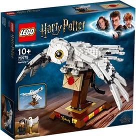 LEGO® Harry Potter™ Hedwige 75979 748748900000 Photo no. 1