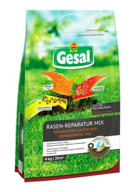 Rasen-Reparatur MIX, 4 kg Compo Gesal 659294300000 Bild Nr. 1