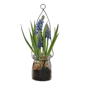 Plante artificielle Muscari, dans un verre suspendu, bleu, H: 17cm 657361200000 Photo no. 1