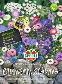 Sperli´s Sommerblütenpracht Sementi di fiori Sperli 650178500000 N. figura 1