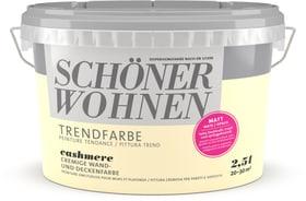 Trendfarbe Matt Cashmere 2.5 l Wandfarbe Schöner Wohnen 660907800000 Inhalt 2.5 l Bild Nr. 1