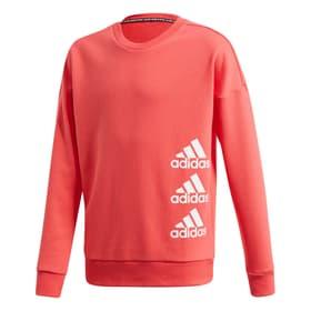 Noticias Planta de semillero llegar  Adidas MUST HAVES SWEATSHIRT Pull-over pour fille – acheter chez sportxx.ch