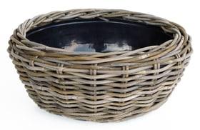 Dry Pot Blumenschale Dry Pot 656127800032 Farbe Grau Grösse ø: 32.0 cm x H: 14.0 cm Bild Nr. 1