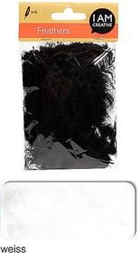 Dekofedern I AM CREATIVE 665525400020 Farbe Weiss Bild Nr. 1