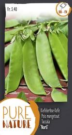 Pois mangetout 'Norli' 50g Semences de legumes Do it + Garden 287108400000 Photo no. 1