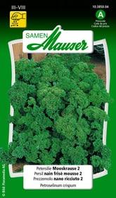 Persil nain frisé mousse 2 Semences d'herbes arom. Samen Mauser 650113103000 Contenu 5 g (env. 2 - 5 m²) Photo no. 1