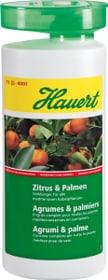 Agrumes & palmiers, 1 l