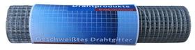 Rete elettrosaldata zincata 636636800000 Colore Zinco grigio Taglio L: 5.0 m x A: 50.0 cm N. figura 1