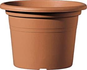 Vaso per piante Geo Deroma 659003800000 Colore Marrone Taglio ø: 40.0 cm x A: 27.2 cm N. figura 1